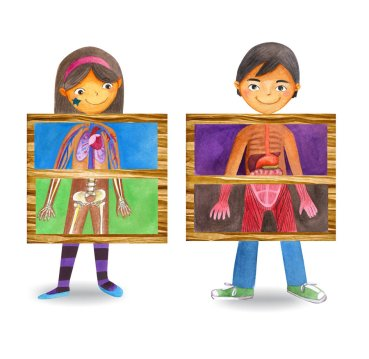 Human-anatomy-for-kids-free-printable